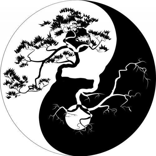 Bonsai Ying yang tree