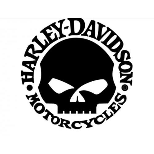 Harley Davidson motorcycle skull plaque