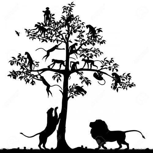 Lion monkey tree