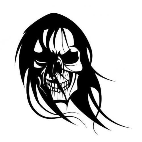 Long haired skull