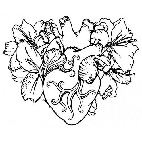 Anatomical heart flower 2