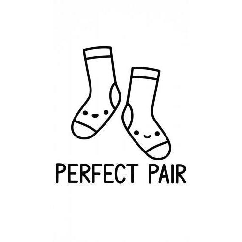 Perfect pair cute socks
