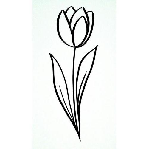 Simple flower tulip